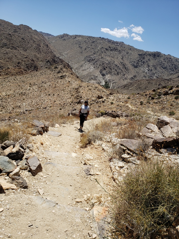 What I learned about resilience from hiking in the desert